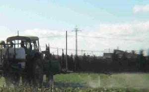 Repercusiones negativas sobre la salud humana de los pesticidas agrícolas