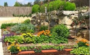 El huerto ecológico un espacio vital a recuperar