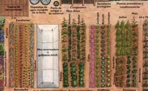 El huerto ecológico en poco espacio