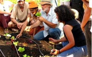 Curso Taller de Huerto Familiar Ecológico 25 y 26 de marzo