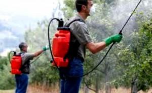 Estudios oficiales relacionan pesticidas y enfermedades humanas graves